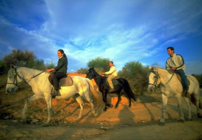 paseo con caballos